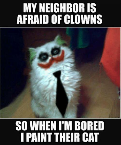 Funny boredom meme: my neighbor is afraid of clowns, so when I'm bored I paint their cat.