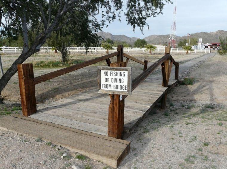 Funny sign no fishing no diving