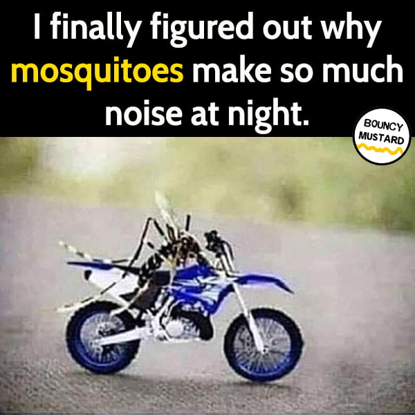 Funny meme June I finally figured out why mosquitoes make so much noise at night.