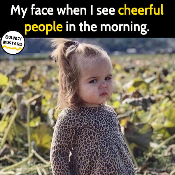 Funny meme June My face when I see cheerful people in the morning.