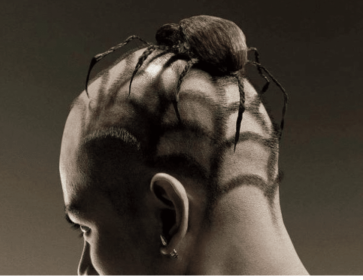 funny hairstyle fail spider