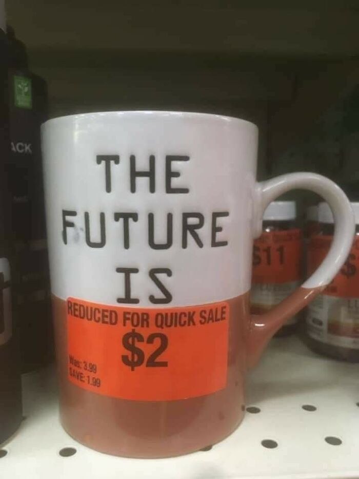 funny fails intentional joke the future is reduced mug