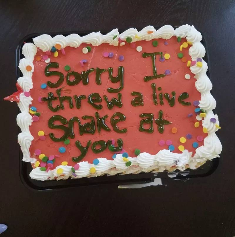 funny apology cake sorry I threw a live snake at you.