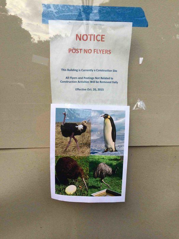 funny public notice reply